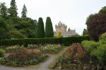 scot - cawdor new rose beds