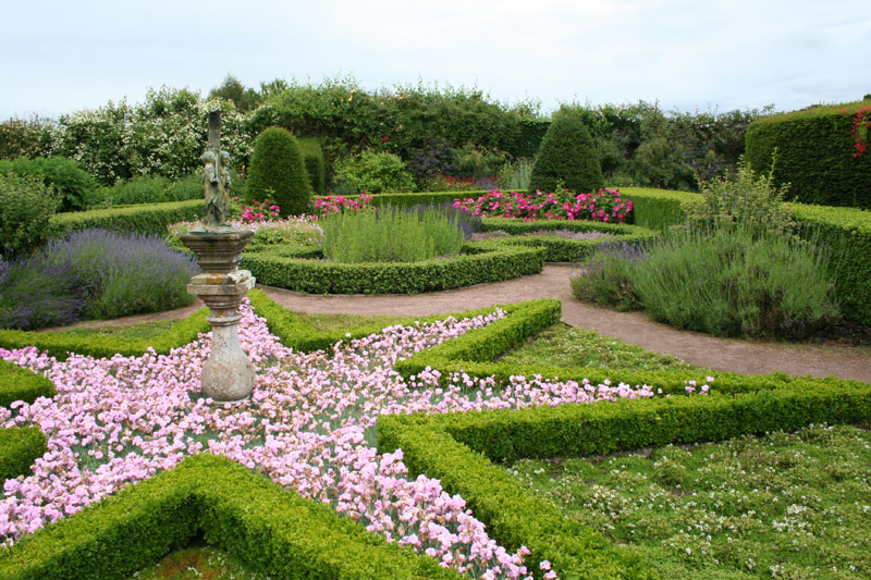 scot cawdor star lavender garden busybeetraveler