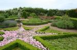 scot - cawdor star lavender garden