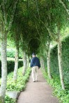 scot - cawdor tree arbor