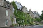scot - crail ivy house