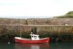 scot, crail, red boat in harbor