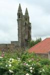 scot - St. Andrews cath