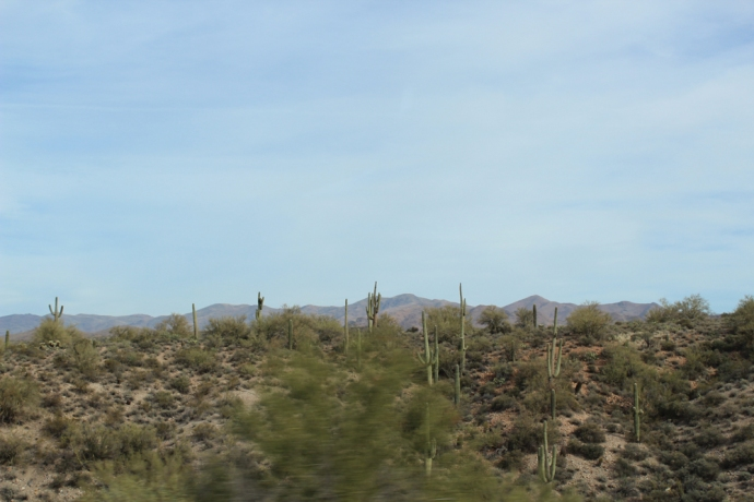 AZ, cactus and hills