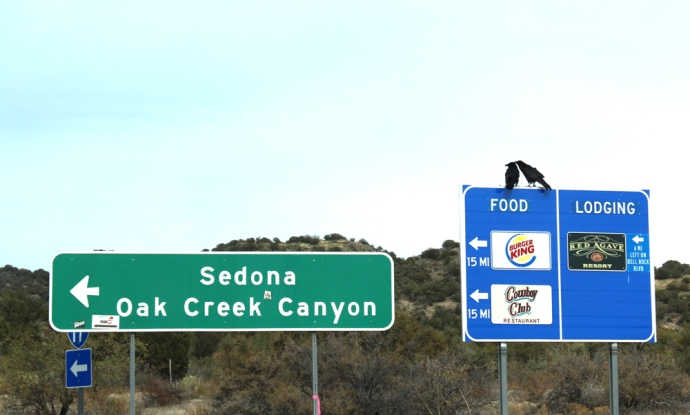 AZ, Sedona hwy sign, crows