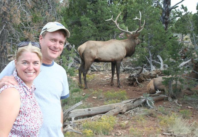 Elk bull, jamie, wally