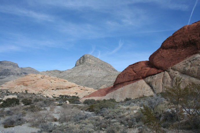 Red Rock, turtlehead:red rocks
