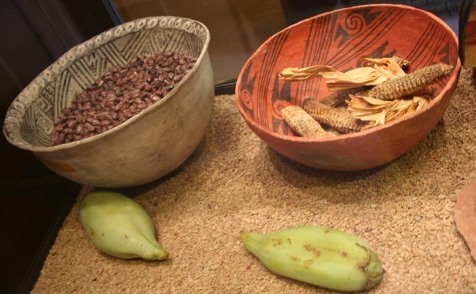 tusayan pots with beans, corn