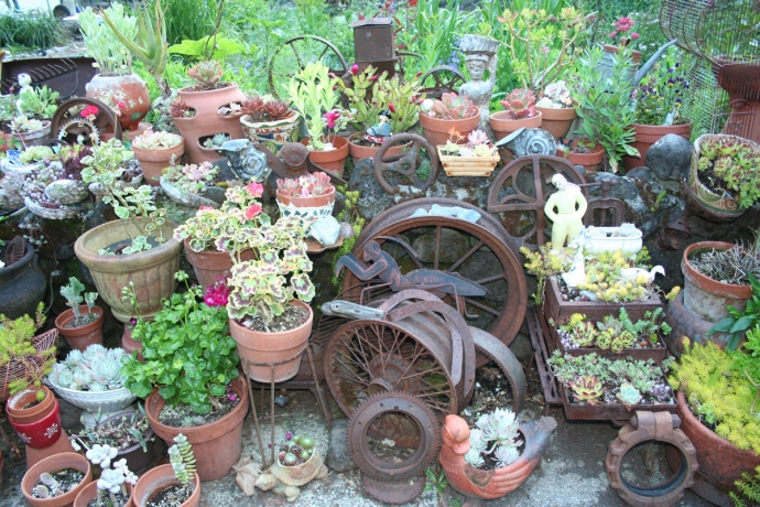 Flowers, iron scraps, pots