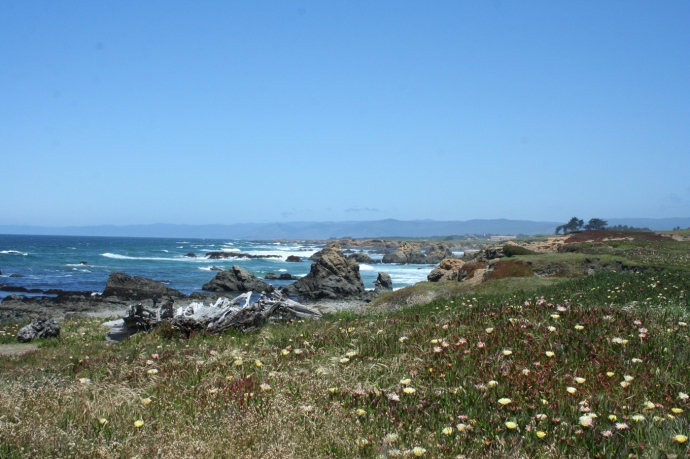 Glass Bch-view up coast