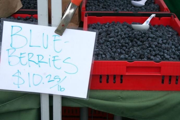 Marin FM-blueberries