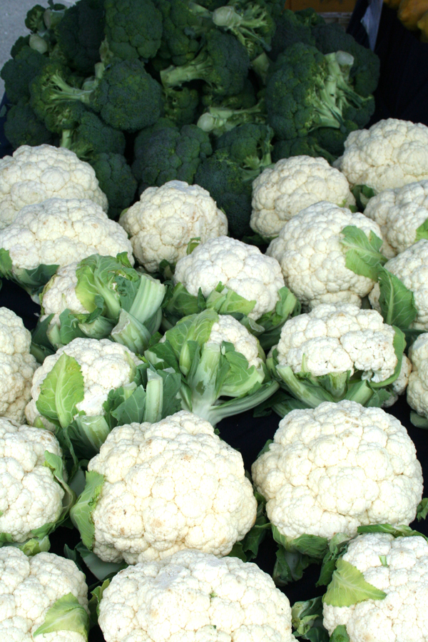 Marin FM-broccoli