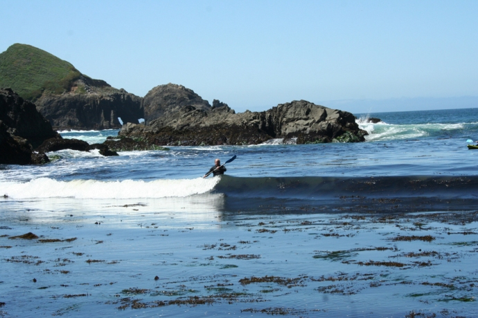 Mendo-kayakers riding wave in