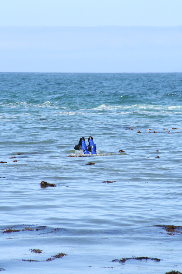 Mendo-skip diving, legs