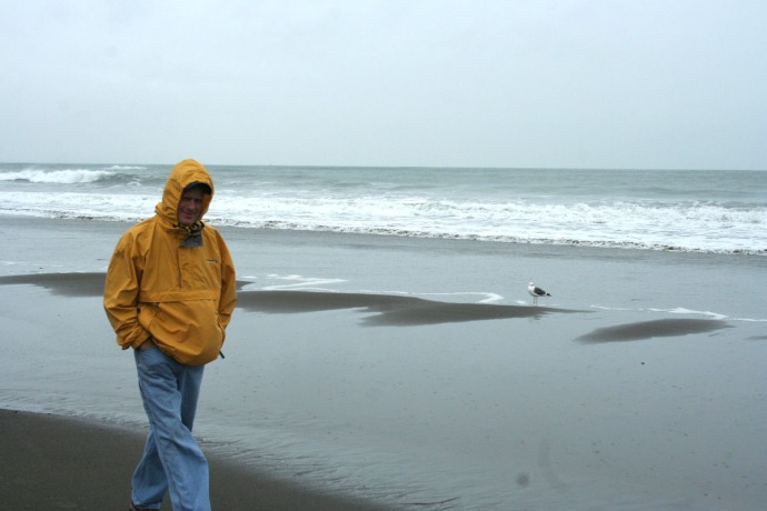 Muir bch, wally seagull