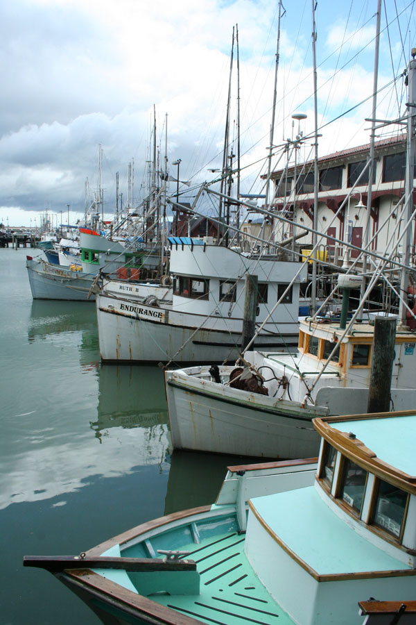 SF-Fishing boats, vert
