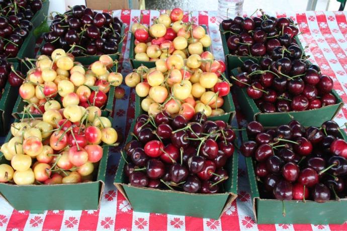 SFFM cherries