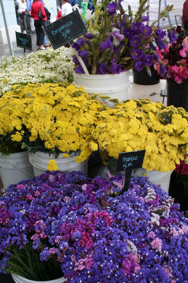 SFFM-Flower buckets