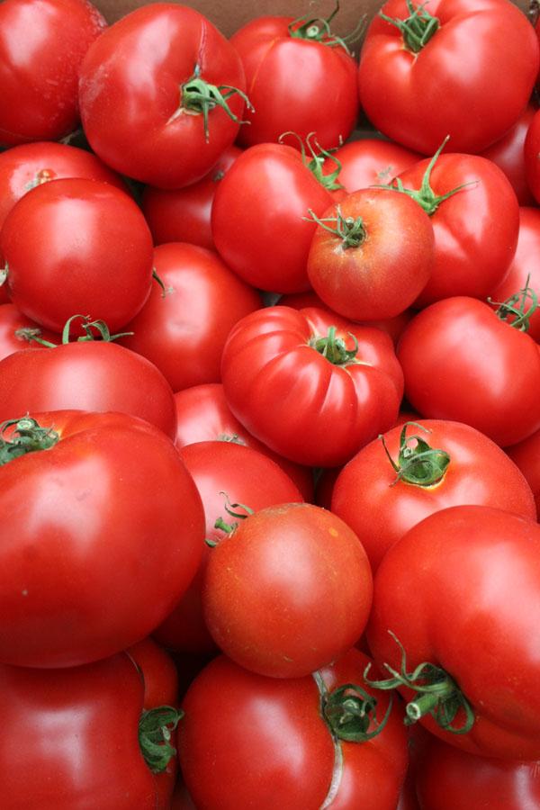 SFFM-tomatoes