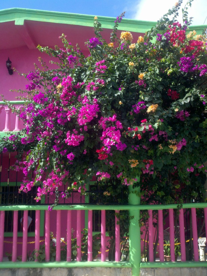 Tulum pink and green house & bouganvilla