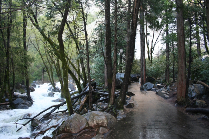 Yose-Bridalveil path, creek flooding