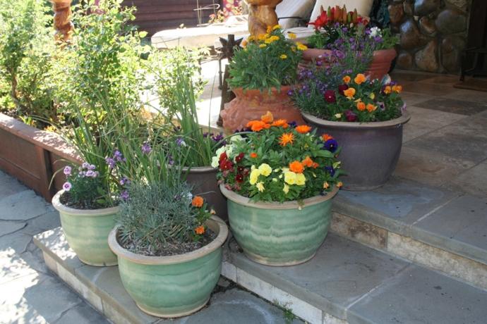 Yose, spinn, flower pots