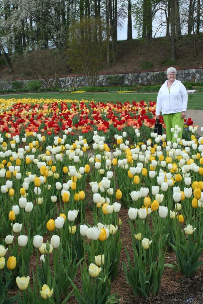 Biltmore mom in tulips