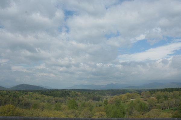 biltmore view