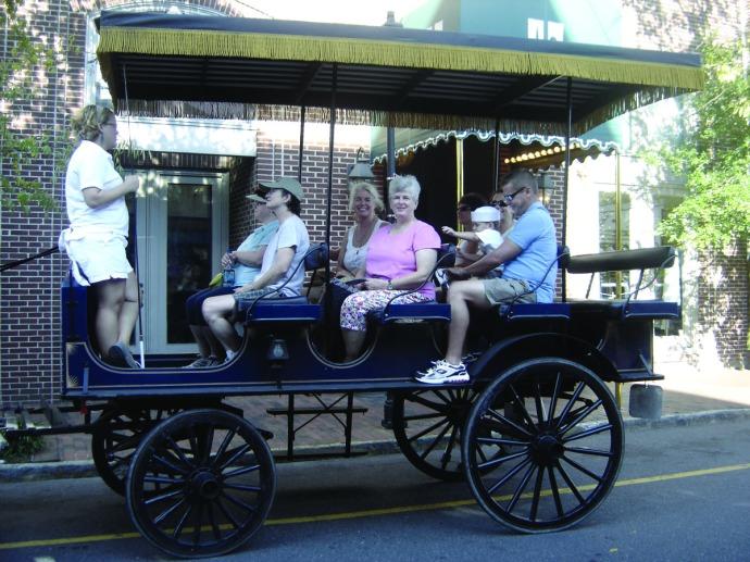 Charleston mule wagon ride