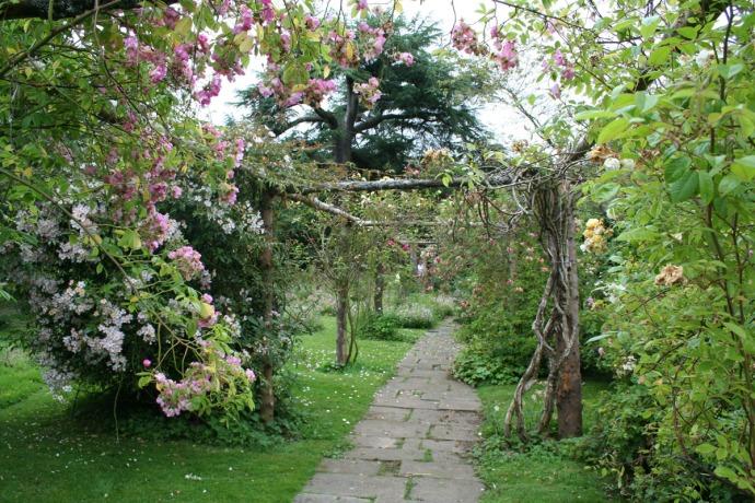 Egling rose arbors