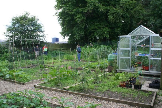 Ogles castle garden