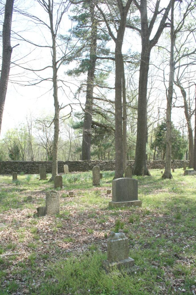Villines Cemetery, pine tree view