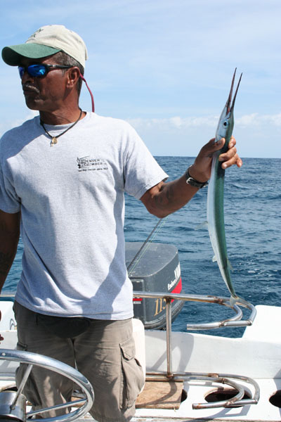 Belize, Tulu with garr fish