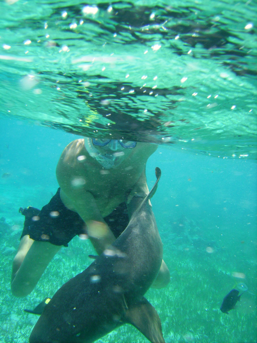 BELIZE: Fishing & Snorkeling Shark-Sting Ray Alley