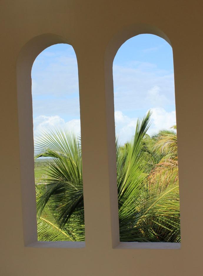 Ka'an windows to palm