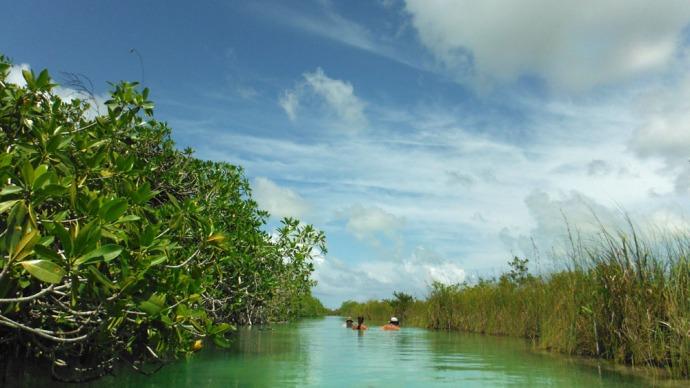 Sian Ka'an river float view