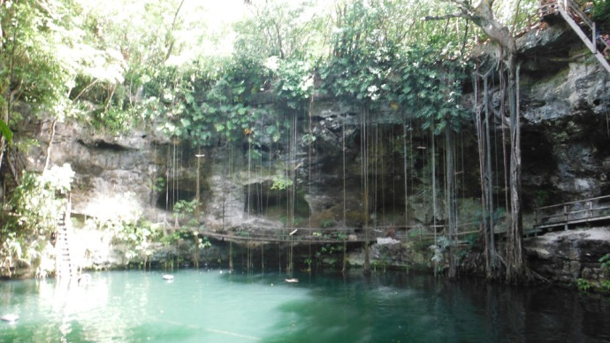 Xcanche cenote hori from bottom