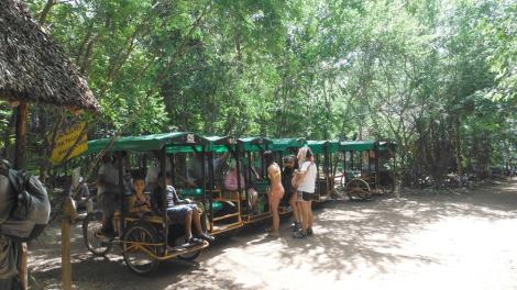 Xcanche cenote trike stand