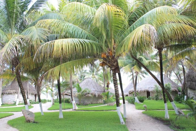 Maya Tulum cottages