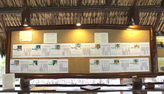 Maya Tulum masseuse board