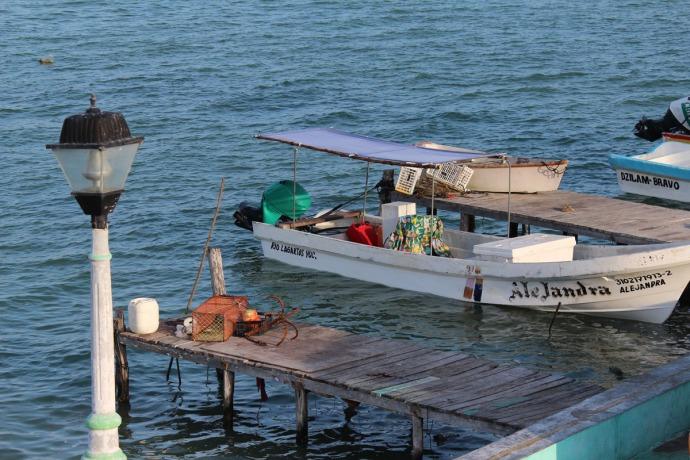 Rio Lagartos Alejandra boat