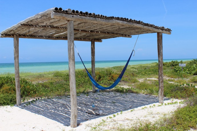 Rio Lagartos beach hammock palapa
