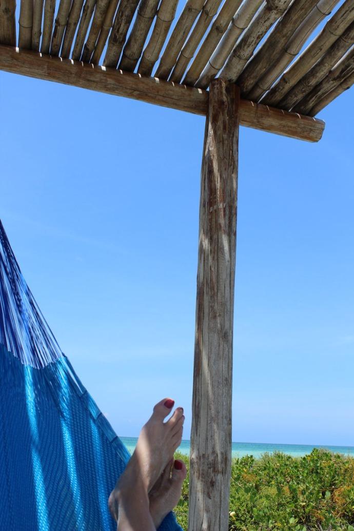 Rio Lagartos beach jamies hammock vert