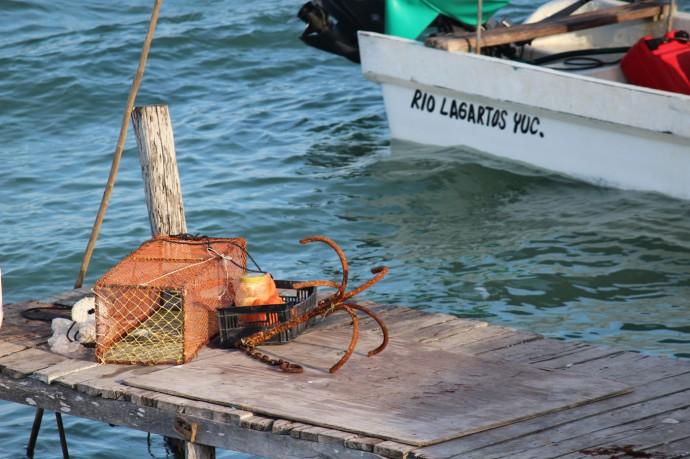 Rio Lagartos trap, anchor & rio boat