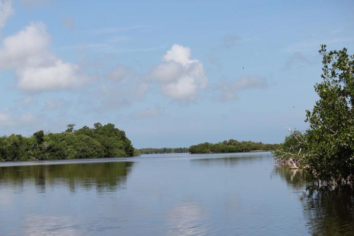 Rio Lagartos view of river