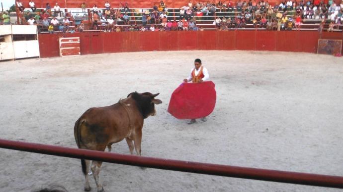 San Felipe bullfight matador & bull standing