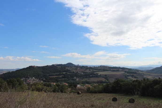 Todi, hayfield view
