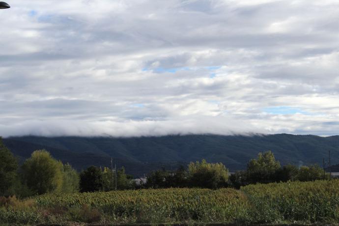 Cortona fog along mountain, corn field