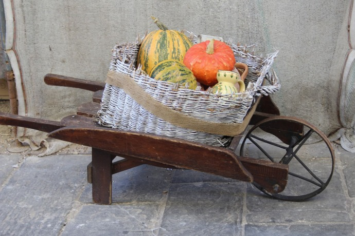 Cortona wheelbarrow pumpkins