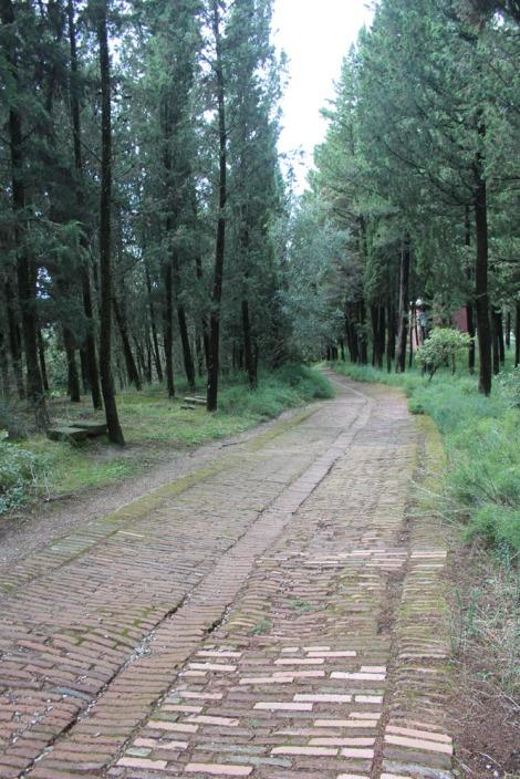 Monte Oliveto brick sidewalk to monastery